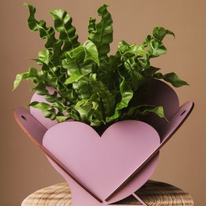 Cutie flori in forma de inima - Alege dintr-o gama larga de cuti de cadou, cuti de cadouri, cutii de lemn, cutie pt cadou, cutii handmade, cuti handmade